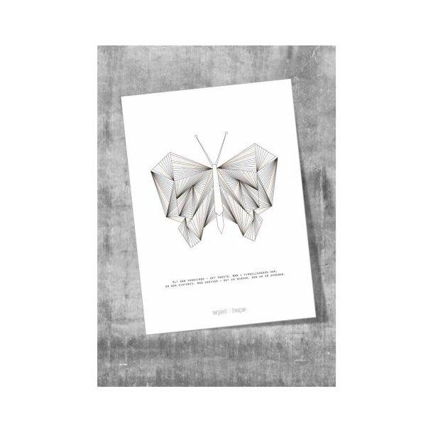 Plakat, sommerfuglen