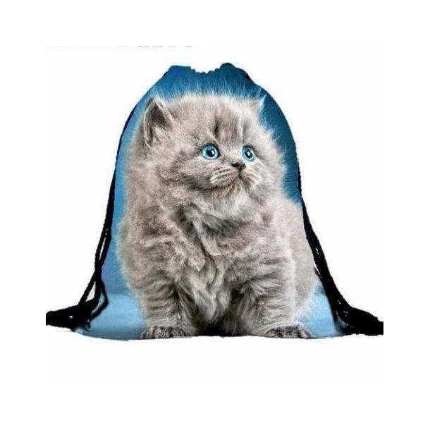 Gymnastik pose med sød kat